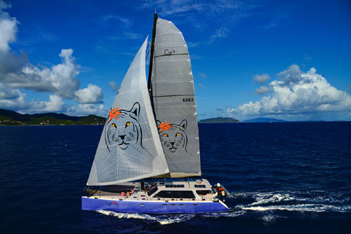 Tiger Lily Crewed Catamaran Charter