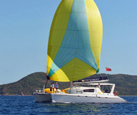 Catamaran Viking Dream
